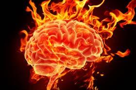 Neuro is hot