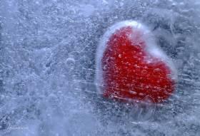 Bevroren hart-zeer